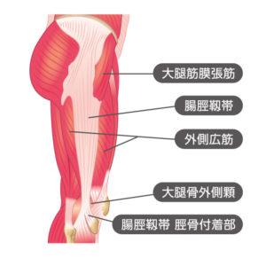 お尻の筋肉と腸脛靭帯の関係性について
